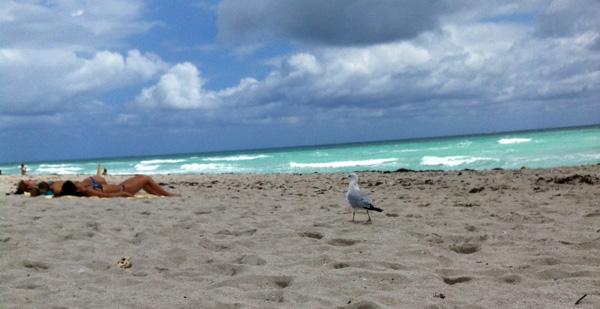 Miami Beach през март месец. Ваканция в Маями