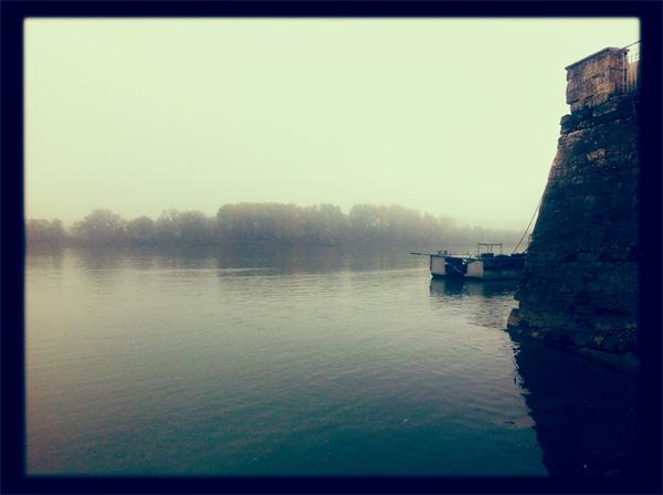 Видин, Дунав, Градската градина през есента, блогът на Стефан Чорбанов